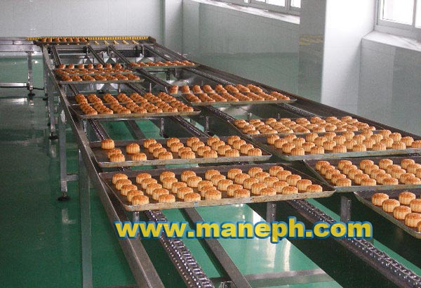 CAKE BELT CONVEYOR