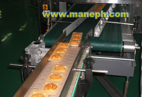 CAKE CONVEYOR BELT